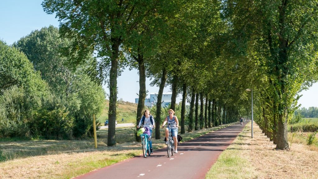 Pieckelaan – a scenic old road turned into a cycle highway. Photo credit: Province Gelderland.