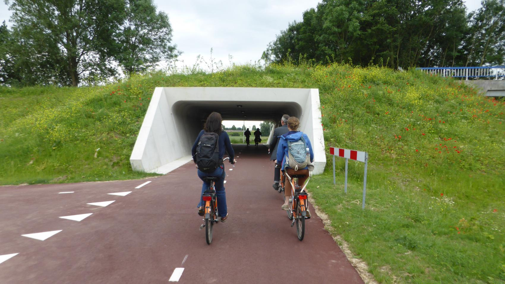 The Kattenleger tunnel is very simple and does not require overcoming any height difference, but shortened the route by 250 m and eliminated the need of crossing a busy road.